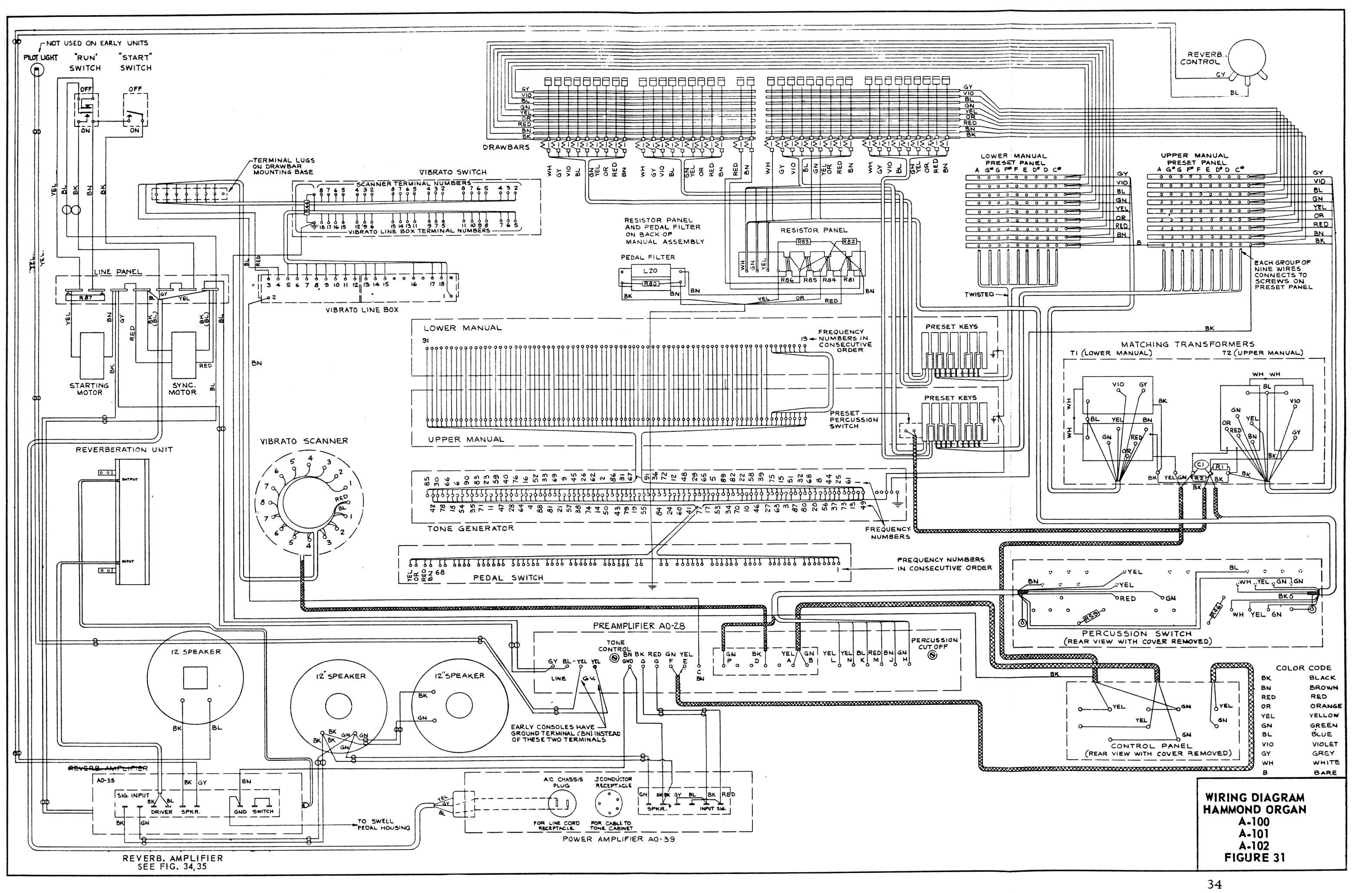 Anatomy Chart Organs Manual Guide