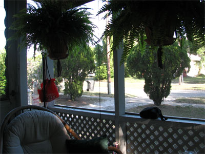 Click here to download a 2592 x 1944 JPG image showing the inside of the front porch, taking on the look of a small Tiki Hut.