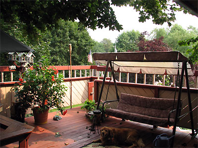Click here to download a 2592 x 1944 JPG image showing the elevated deck with Brandy, a happy dog.