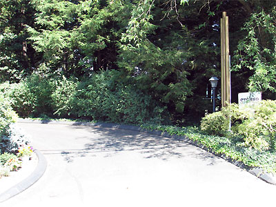Click here to download a 2592 x 1944 JPG image showing the driveway leading into the property.