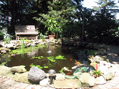 Click here to download a 2592 x 1944 JPG image showing the fish pond and gardens.