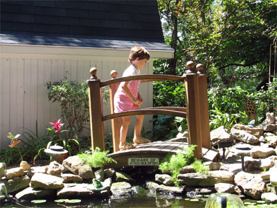 Click here to download a 2592 x 1944 JPG image showing the bridge across one end of the fish pond bearing a sign that warns of attack goldfish.